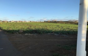 Biens  à vendre - Terrain agricole - grand-baie