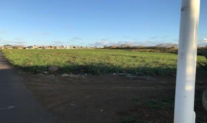 Biens  à vendre - Terrain agricole -